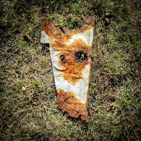 art imitates dog's life