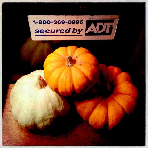 pumpkin security