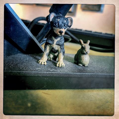 tabor and leland: freelance mini POS security
