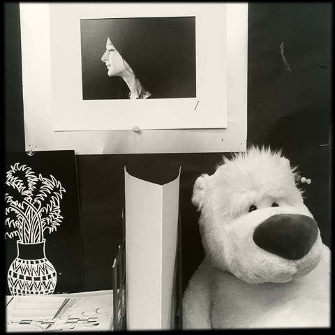 look, we just have different ways of looking at things, ntm, you're a photograph and I'm a stuffed animal