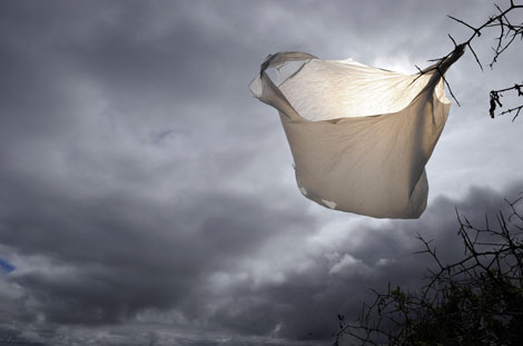 cloud bagging