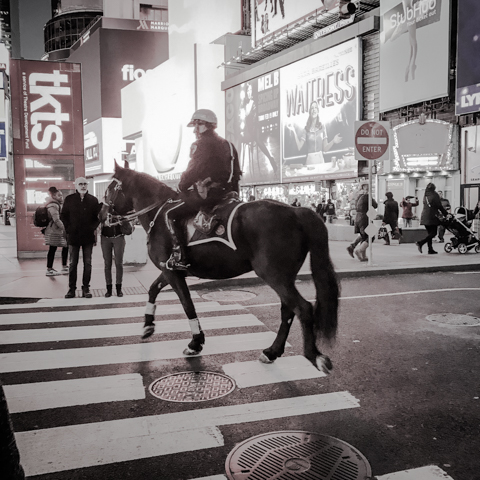 mixed use pedestrian/equestrian crossing, times square