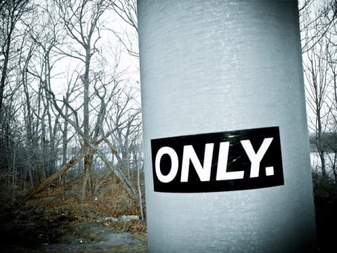 pole. all margins of error.