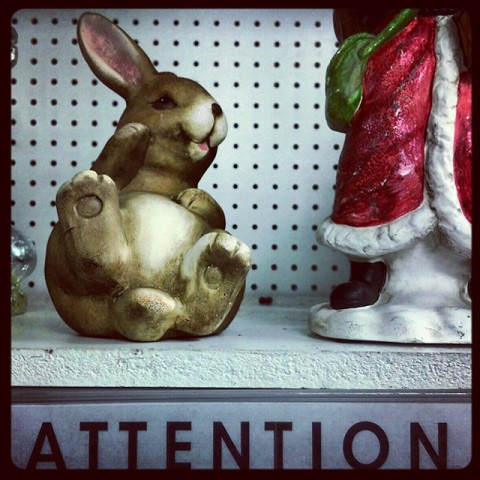 proof of easter bunny (and maybe santa)