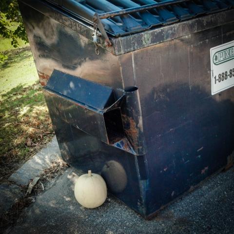 white pumpkin trash