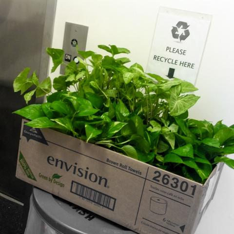 new adventures in sustainable fertilizer