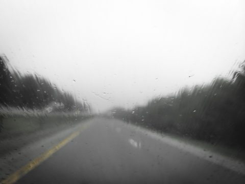 the road wet traveled