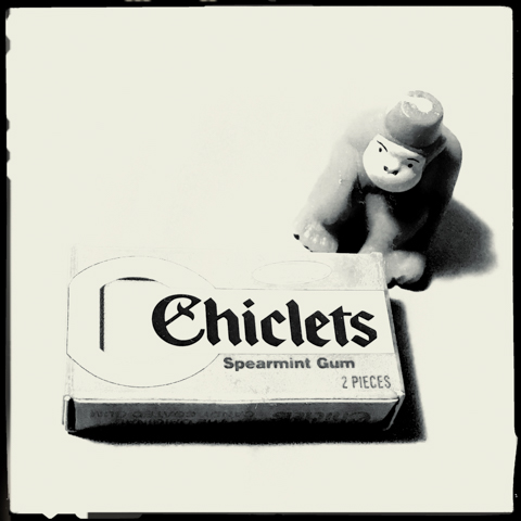 monkey see, monkey chew