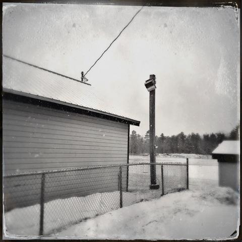 the last landline
